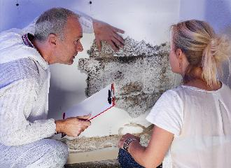 thumbnail of Looking for Mold Removal Methods