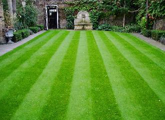 thumbnail of Seven Tried and True Methods to Care for your Lawn & Garden