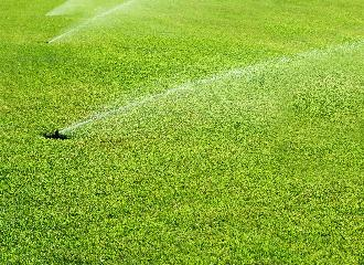 thumbnail of The Ten Advantages of Getting an Automated Sprinkler System